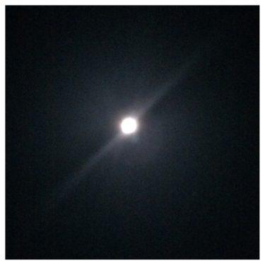 月がきれいですね。にはじまり数々の言い伝えがある月。生活に欠かすことのできない衛星。